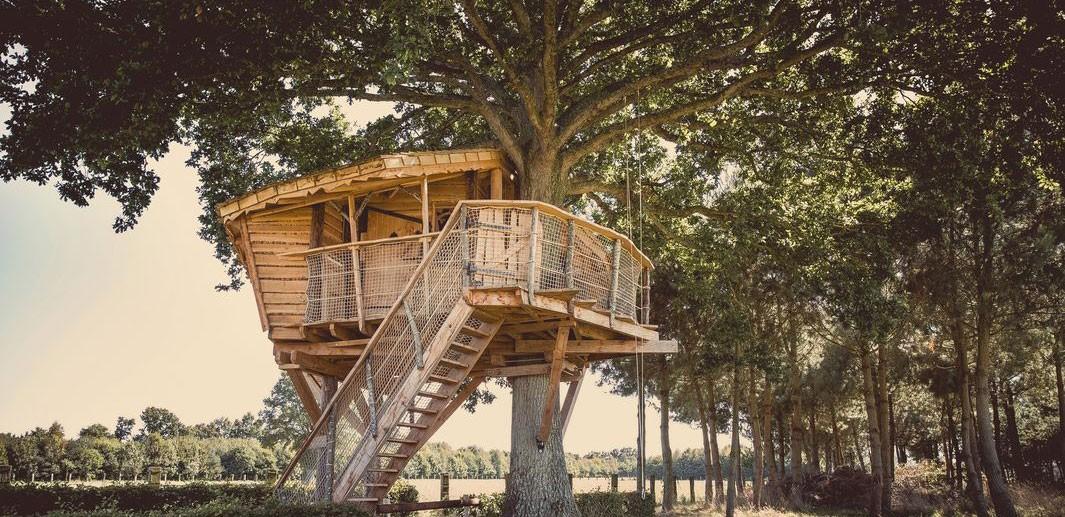 cabane dans les arbres pays de loire